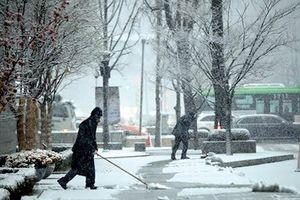 Tuyết đầu mùa tại Hàn Quốc rơi dày nhất trong gần 40 năm qua