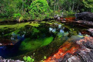 Mê hoặc trước con sông có 5 màu sắc biến đổi theo mùa