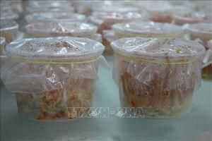 Sản xuất giống và nuôi thương phẩm nấm đông trùng hạ thảo tại Thanh Hóa