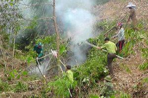 Yên Bái: Diễn tập phòng cháy chữa cháy rừng tại xã Lương Thịnh