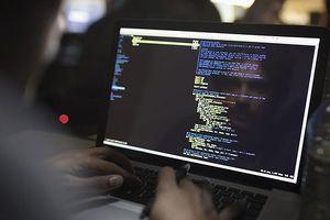 Cài phần mềm virus phá hoại có thể bị phạt đến 12 năm tù