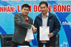 Liên đoàn bóng bàn Việt Nam nhận tài trợ nửa tỷ đồng