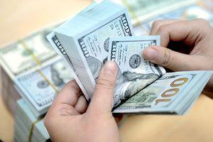 Tỷ giá trung tâm vẫn neo cao, ngân hàng thương mại tiếp tục giảm giá USD