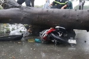 Hai người chết từ ảnh hưởng của cơn bão số 9