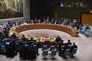 Nga yêu cầu HĐBA LHQ họp khẩn về căng thẳng với Ukraine trên Biển Azov