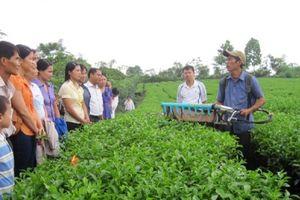 Khoa học và công nghệ góp phần đẩy nhanh quá trình xây dựng nông thôn mới
