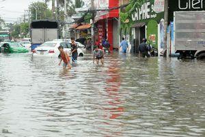 TP Hồ Chí Minh yêu cầu khẩn cấp giám sát rác thải sau bão