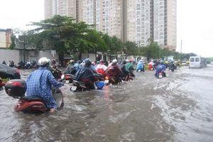 TP.HCM: Hôm nay (26/11), học sinh toàn thành phố được nghỉ học