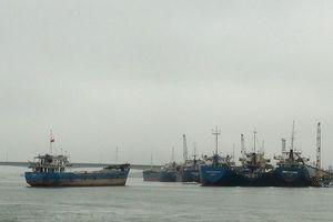Đề xuất đầu tư Dự án đầu tư xây dựng khu bến cảng Mỹ Thủy trên tổng diện tích 685ha