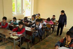 Quảng Bình: Khởi tố vụ cô giáo chỉ đạo cả lớp tát bạn 231 cái