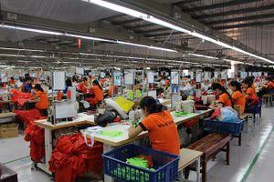 Ninh Bình: 750 đơn vị nợ đọng BHXH, BHYT, BHTN