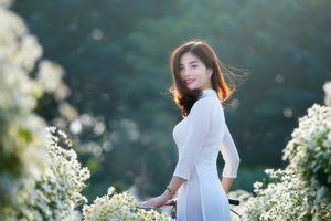 Di sản Việt Nam 2018 qua các tác phẩm nhiếp ảnh xuất sắc