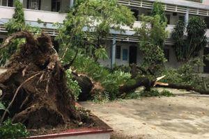 Hai trường học vẫn chưa hoạt động trở lại sau bão số 9