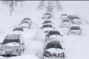 Bão tuyết Mỹ làm hơn 1.240 chuyến bay bị hủy, du khách mắc kẹt