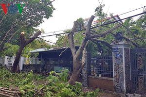 Người dân TP HCM bắt tay dọn dẹp nhà cửa, đường phố sau bão số 9