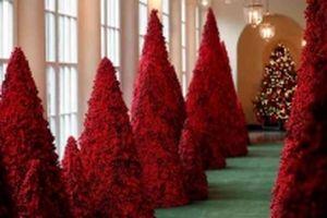 Không khí Giáng sinh tràn ngập Nhà Trắng