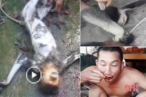 Lời khai nhóm người giết khỉ, ăn óc sống rồi phát trực tiếp lên Facebook
