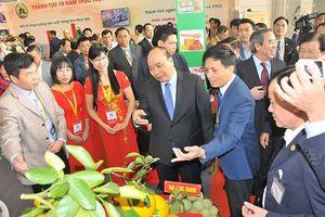 Thủ tướng Nguyễn Xuân Phúc chủ trì 'hội nghị Diên Hồng' về tam nông
