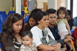 DHS xác nhận Chính phủ Mỹ giam giữ khoảng 14.000 trẻ nhập cư