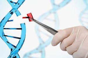 Nhà khoa học Trung Quốc tuyên bố tạo ra được 2 đứa trẻ chỉnh sửa gene đầu tiên trên thế giới, có khả năng miễn nhiễm HIV suốt cuộc đời