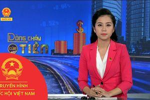 BẢN TIN DÒNG CHẢY CỦA TIỀN CHIỀU NGÀY 27/11/2018