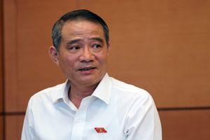 Bí thư Đà Nẵng: Ông Tất Thành Cang đang phải dự các cuộc họp xét kỷ luật