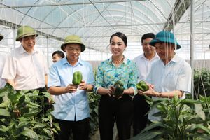 Nghị quyết 26: Động lực thúc đẩy phát triển nông nghiệp, nông dân, nông thôn