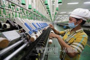 'Mạnh tay' với doanh nghiệp giao dịch liên kết 'né thuế'