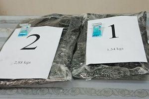 Nữ hành khách vận chuyển 4,42kg cocaine qua sân bay Tân Sơn Nhất