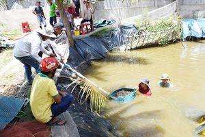 Huyện Thạnh Phú khắc phục hạn chế, giải quyết đồng bộ vấn đề nông nghiệp, nông dân, nông thôn