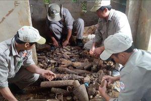 Quảng Trị: Phát hiện và xử lý gần 1.000 vật liệu nổ