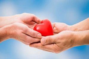 Gần 20.000 người đăng ký hiến tạng sau khi chết não