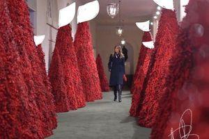 Bà Trump bị chỉ trích vì những cây thông Giáng sinh đỏ rực trong Nhà Trắng