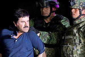 Cuộc sống như ông hoàng của trùm ma túy El Chapo