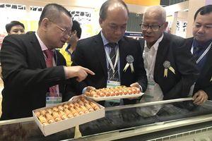 Thủy sản Minh Phú sẽ đạt mức kỷ lục xuất khẩu tôm