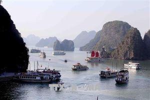 Nhức nhối vấn nạn đeo bám tàu du lịch trên vịnh Hạ Long