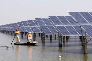 Phát triển năng lượng tái tạo: Vấn đề là khơi thông nguồn vốn