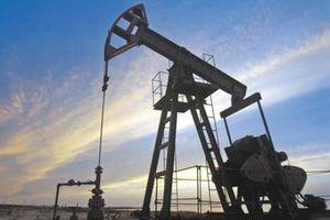 Giá dầu thế giới rơi xuống mức thấp nhất trong gần 14 tháng qua