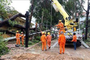 Nhanh chóng khắc phục thiệt hại lưới điện sau bão số 9