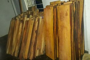 Hàng trăm phách gỗ không rõ nguồn gốc trong nhà máy thủy điện
