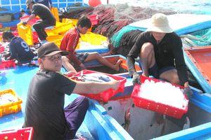 Ngư dân hoạt động trên biển: 'Chớp mắt' chủ quan cướp mạng người