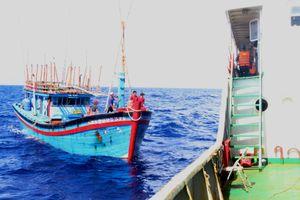 Hải quân Vùng 3 cứu 5 ngư dân Quảng Ngãi bị nạn