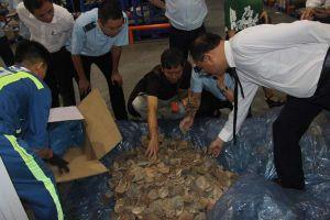 Cận cảnh 2 lô hàng chứa vẩy tê tê, vi cá mập tại sân bay quốc tế Nội Bài