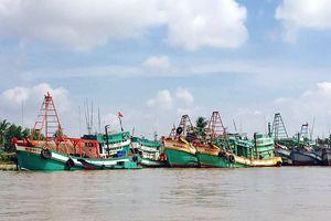 Ngành thủy sản Kiên Giang đón nhận phần mềm chuyên dụng của VNPT