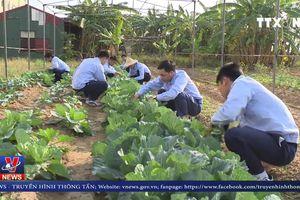 Lao động Việt Nam có cơ hội làm việc ở Bulgaria