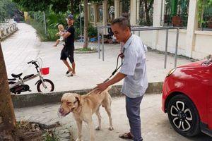 Rọ mõm cho chó: Đã có quy định nhưng... hình như chưa đủ!