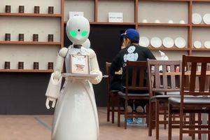 Tokyo thử nghiệm robot phục vụ điều khiển bởi người khuyết tật