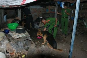 Kinh hoàng ở Đắk Nông, gọi hội đánh chết chủ vì bị chê chưa quen việc