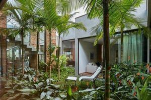Vườn nhiệt đới sống động trong căn biệt thự nhà giàu