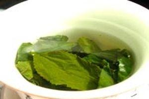 Uống trà xanh giúp tăng mật độ xương